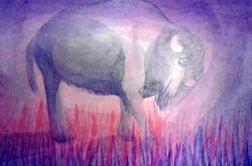 buffaloe